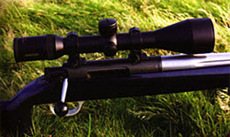 Robin's RPA rifle